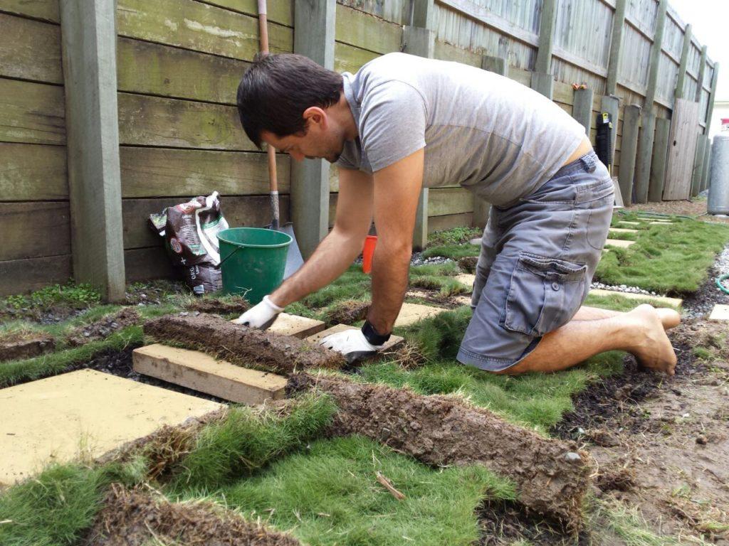 Dan gardening